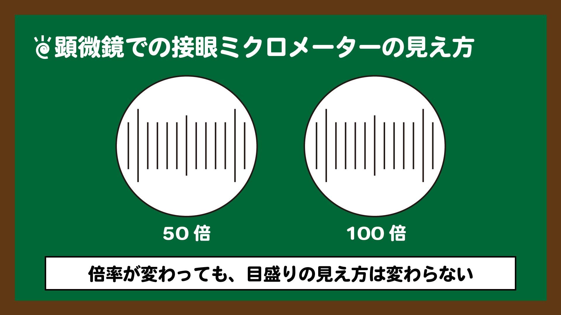 倍率が変わっても接眼ミクロメーターの見え方は変わらない。