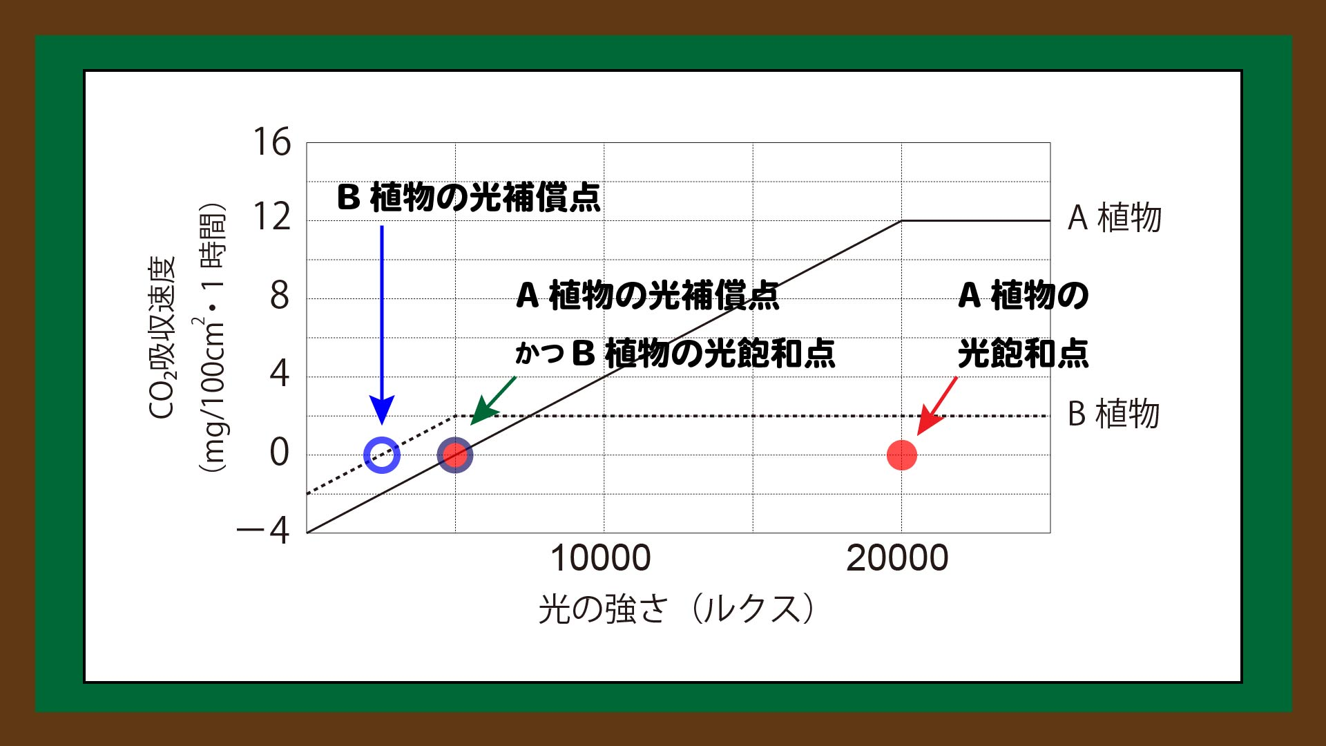 図.光補償点と光飽和点の読み取り