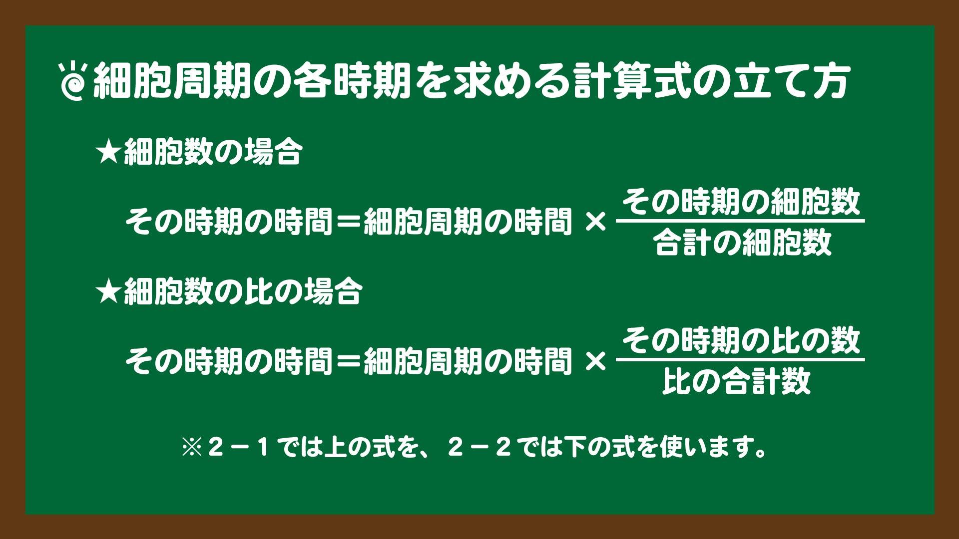 スライド9:細胞周期の各時期を求める計算式の立て方