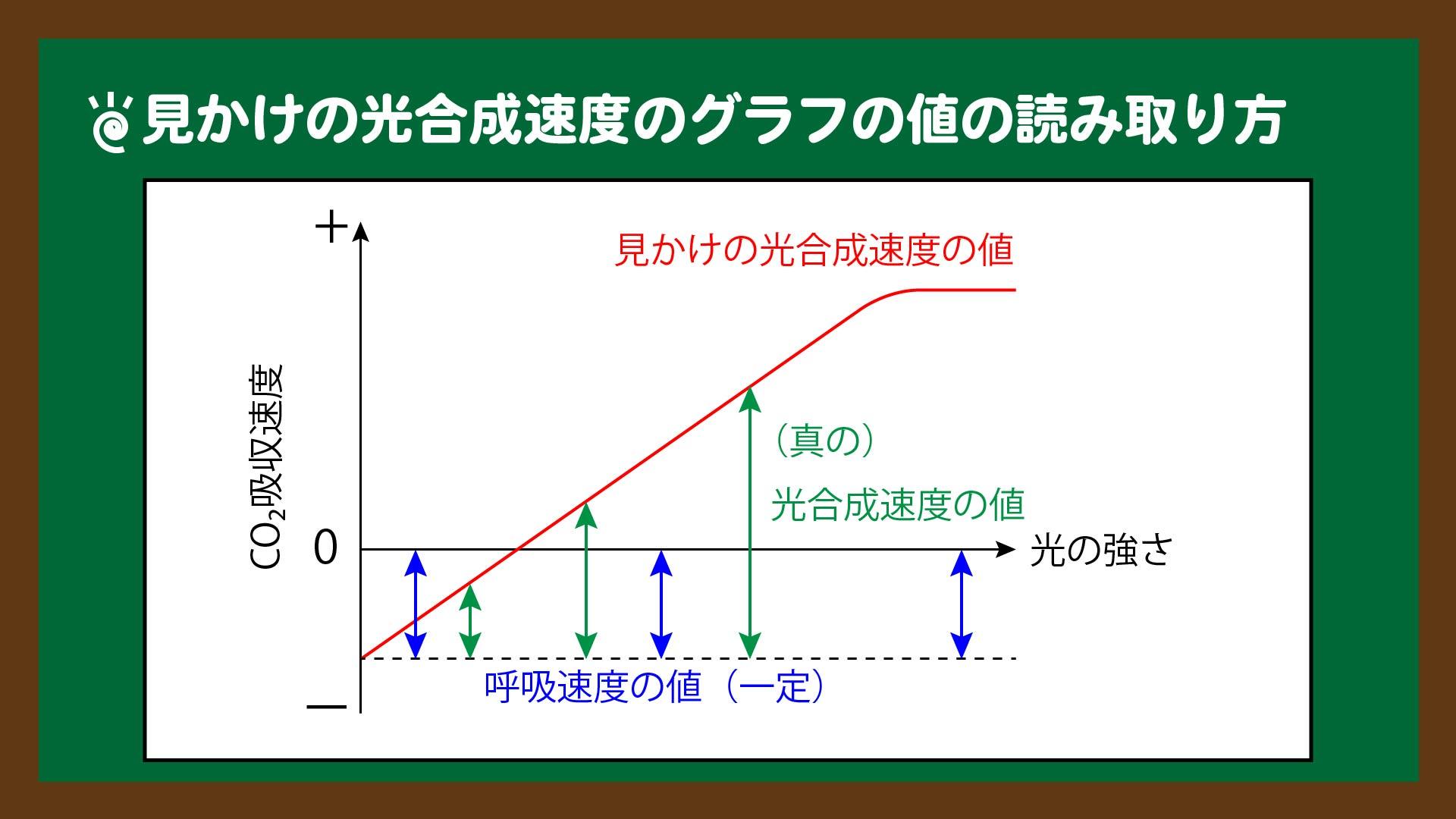 図.見かけの光合成速度のグラフの値の読み取り方