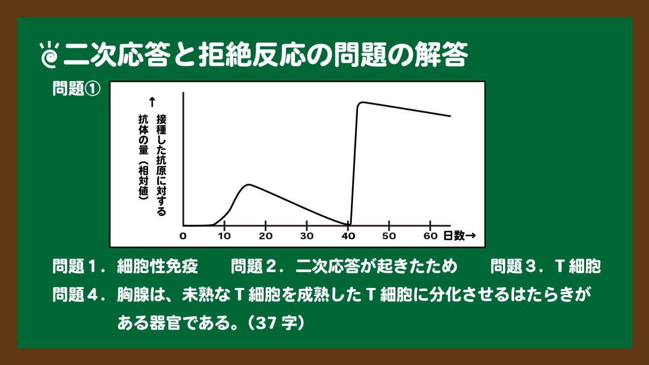 スライド2:二次応答のグラフと拒絶反応の実験の問題の解答