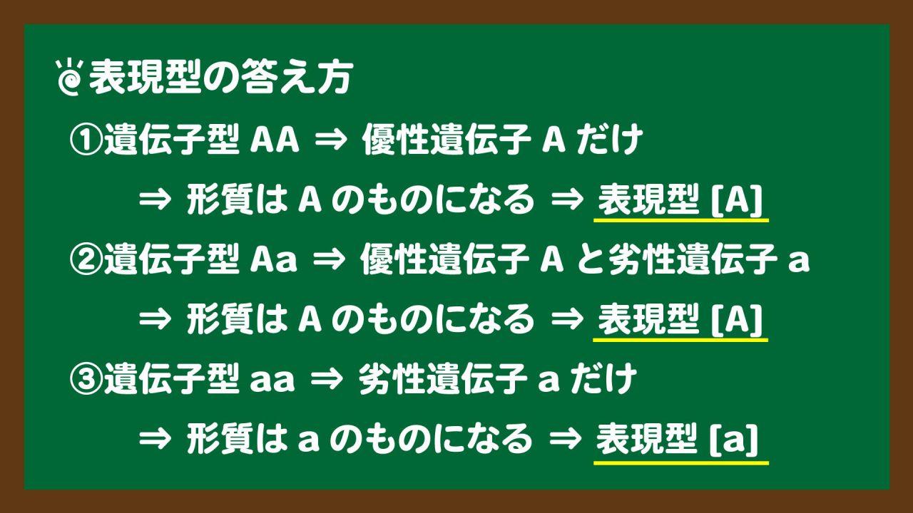 スライド6:表現型の答え方