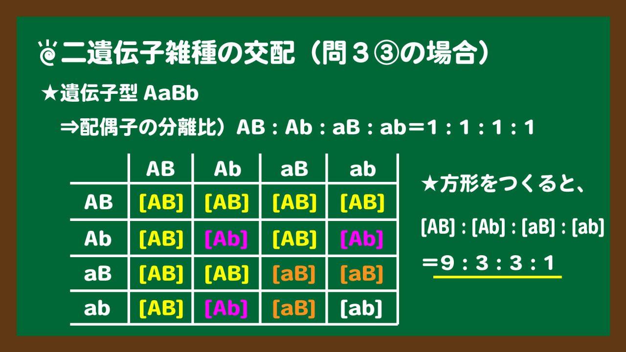 スライド6:二遺伝子雑種の交配のときにつくる方形