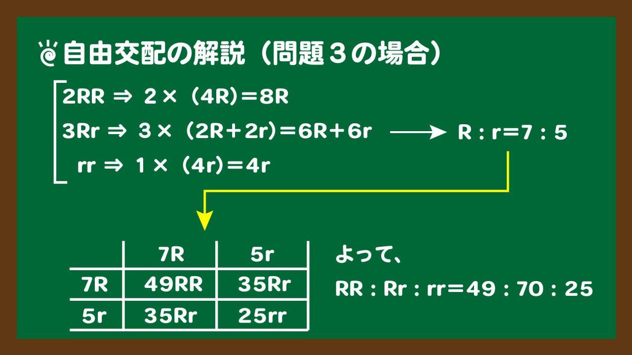 スライド6:自由交配の解説(問題3の場合)