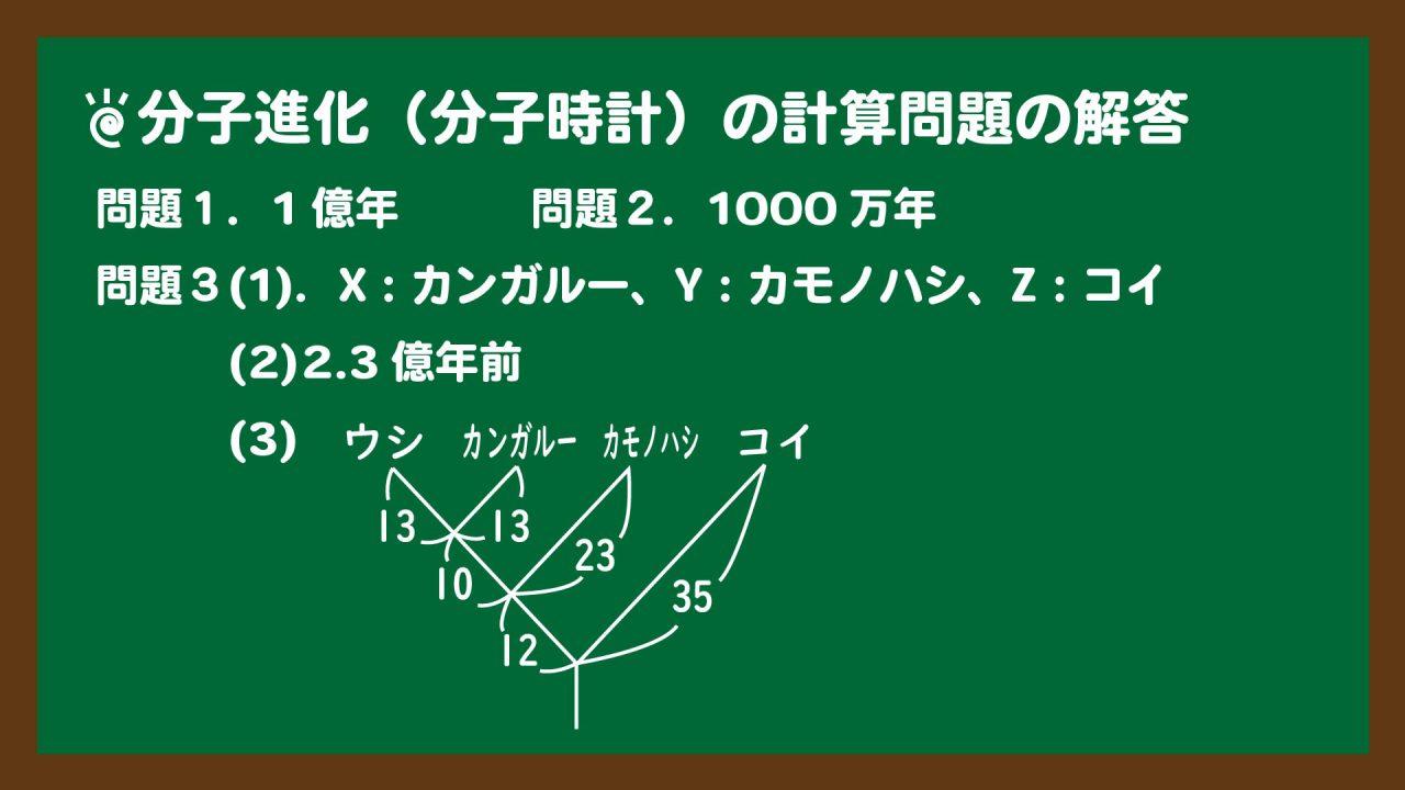 スライド2:分子進化(分子時計)の計算問題の解答