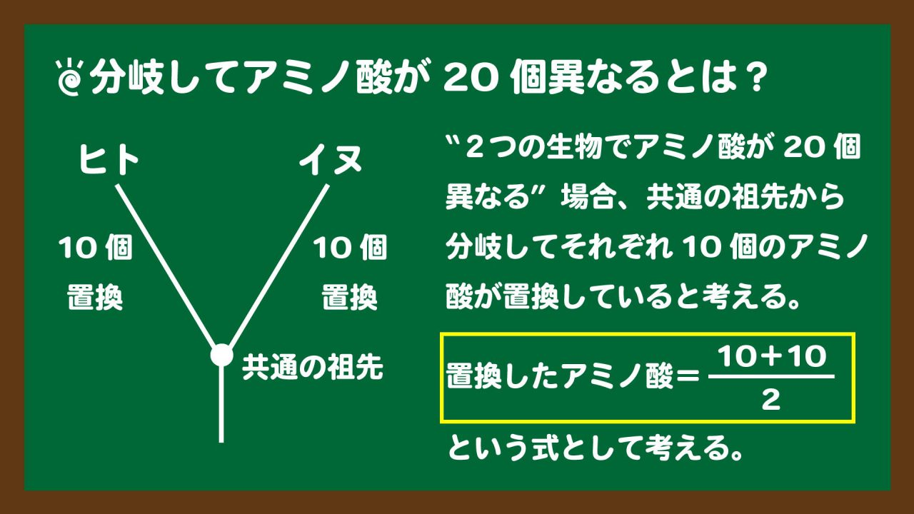 スライド3:2つの生物におけるアミノ酸置換数の考え方