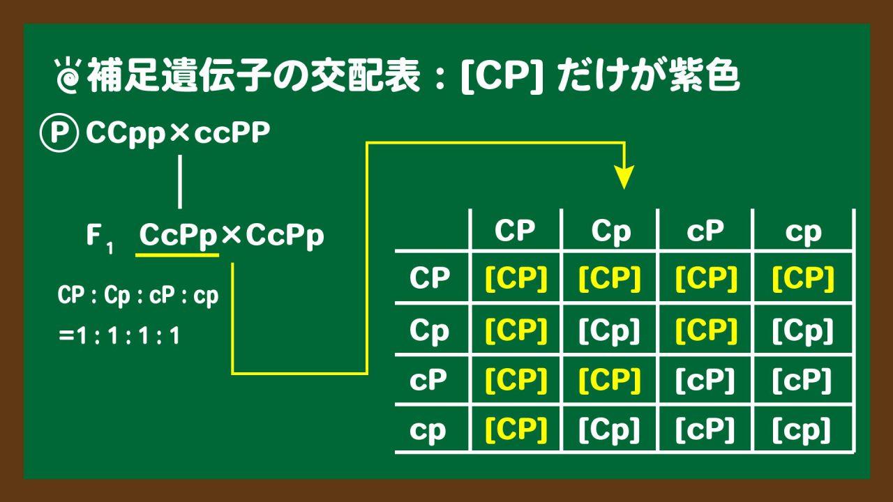 スライド3:補足遺伝子の問題の交配表