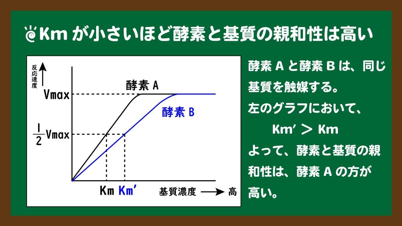 スライド4:Kmが小さいほど、酵素と基質の親和性は高い